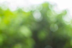 Zielony bokeh tło Zdjęcia Royalty Free