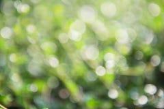 Zielony bokeh tło, zielony bokeh, zielony bokeh abstrakt Obrazy Royalty Free