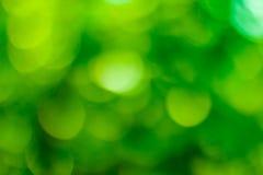 Zielony bokeh tło Zielony Bokeh Zielony bokeh abstrakt, defoc Zdjęcia Stock