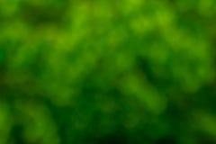 Zielony bokeh tło Zielony Bokeh Zielony bokeh abstrakt, defoc Obrazy Stock