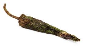 zielony Chile pieprz Zdjęcia Stock