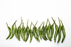 Zielony chili pieprz zdjęcia stock