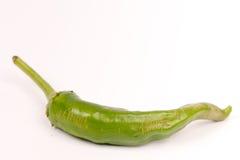Zielony chili pieprz nad białym tłem Fotografia Royalty Free