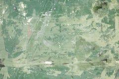 zielony crunch zdjęcie royalty free