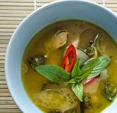 Zielony curry z kurczakiem Zdjęcia Stock