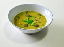 Zielony curry z mięsem i oberżyną fotografia royalty free