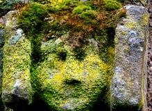 zielony człowiek Obraz Royalty Free