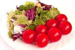zielony czerwony biel Obrazy Stock