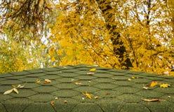 Zielony dach w jesieni Zdjęcie Stock