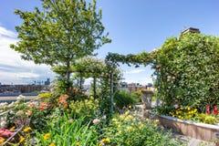 Zielony dachowy ogród Obrazy Royalty Free