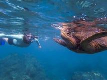 Zielony Dennego żółwia oddychanie przy powierzchnią z Snorkeler w tle obrazy royalty free