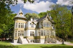 zielony dom Lodz drewniany Zdjęcia Stock