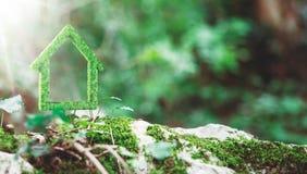 Zielony dom robić z trawą, ekologia Zdjęcia Royalty Free