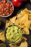 Zielony Domowej roboty Guacamole z Tortilla układami scalonymi Fotografia Stock
