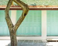 Zielony drewniany drzwi tło Zdjęcia Stock