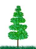 Zielony drzewo Obrazy Royalty Free