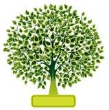 zielony drzewo royalty ilustracja