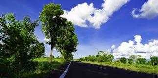 Zielony drzewo, biel chmura, niebieskie niebo, indygowa niebo droga Zdjęcia Stock