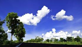 Zielony drzewo, biel chmura, niebieskie niebo, indygowa niebo droga Obrazy Stock