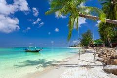 Zielony drzewo drzewko palmowe na piaskowatej morze plaży z białym piaskiem zdjęcie stock