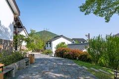 Zielony drzewo i dom w Zhuxian sztuki bloków widoku Obraz Royalty Free