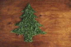 Zielony drzewo igły na drewnianym tle Odgórny widok Obrazy Royalty Free