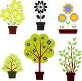 Zielony drzewo, krzaki, kolorów żółtych kwiaty Fotografia Royalty Free