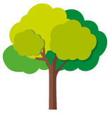 Zielony drzewo z gałąź royalty ilustracja