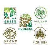 Zielony drzewo z liścia logem ziołowy liścia okrąg ilustracji