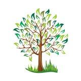 Zielony drzewo z liścia wektoru Stylizowanym wektorem royalty ilustracja