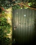 Zielony drzwi przyszłość Obraz Royalty Free