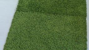 Zielony dywan zbiory