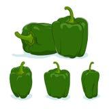 Zielony dzwonkowy pieprz, słodki pieprz lub capsicum, Zdjęcie Stock