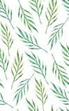 Zielony egzotów liści wzór Akwarela liścia tropikalny tło greenfield royalty ilustracja