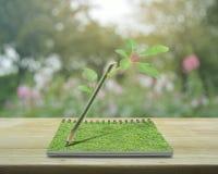 Zielony ekologia pomysłu pojęcie obrazy royalty free