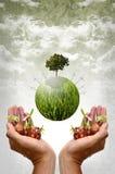 Zielony energetyczny pojęcie, Zielona planeta z silnikami wiatrowymi i ziarno, Fotografia Stock