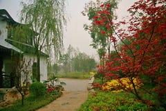 Zielony expo ogród w Zhengzhou fotografia stock