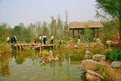 Zielony expo ogród w Zhengzhou zdjęcie royalty free