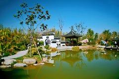 Zielony expo ogród w Zhengzhou obrazy royalty free