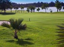 Zielony gazon blisko jeziora na herbacianej plantaci Zdjęcia Stock