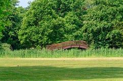 Zielony gazon i drewniany most w jawnym parku w Leipzig, Niemcy zdjęcie stock