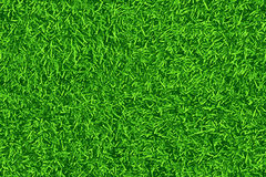 Zielony gazon, trawa Deseniowy tekstury powtarzać bezszwowy royalty ilustracja
