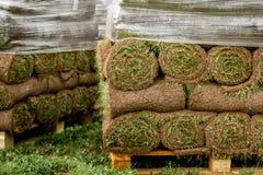 Zielony gazon w rolce na barłogach obrazy stock