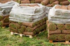 Zielony gazon w rolce na barłogach zdjęcie royalty free