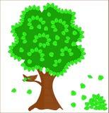 zielony gniazdowy drzewo Zdjęcie Royalty Free