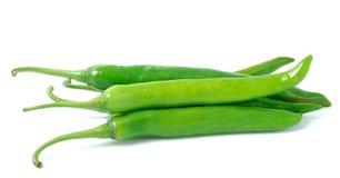 Zielony gorącego chili pieprz na białym tle Obrazy Stock