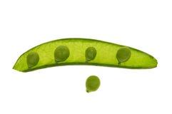 zielony groszek Zdjęcia Royalty Free