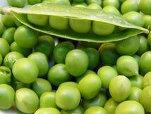 zielony groszek Zdjęcie Stock