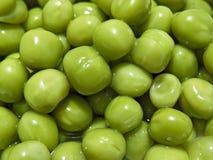zielony groszek Obraz Stock