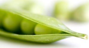 zielony groszek Obraz Royalty Free